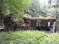 Rokytnice v Orlických horách, Panské Pole, R-S 73 (rok 2010; 01).jpg