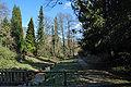 Rombergpark-100331-11493-Bachlauf.jpg