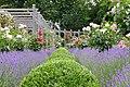 Rosarium Baden Doblhoffpark Gartenanlagen 11.jpg