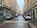 Rue Perrod (Lyon) en mai 2019.jpg