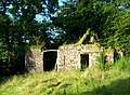 Ruined barn - geograph.org.uk - 541085.jpg