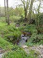 Ruisseau de l'abbaye.JPG