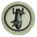SANDF Qualification Explosive Ordnance Disposal EOD badge embossed.png