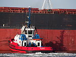 SD SEAL, IMO 9448188 in the Mississippi harbor, Port of Rotterdam, pic9.JPG