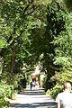 Saint Rémy de Provence 3742 (28633096600).jpg