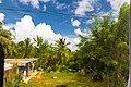 Samaná Province, Dominican Republic - panoramio (171).jpg
