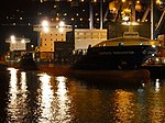 Samskip Innovator & Samskip Courier by night in Rotterdam pic1.JPG