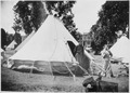 San Francisco Earthquake of 1906, Tent in Hamilton Square - NARA - 513314.tif