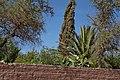 San Pedro de Atacama-CTJ-IMG 5511.jpg