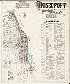 Sanborn Fire Insurance Map from Davenport, Scott County, Iowa. LOC sanborn02624 001-1.jpg