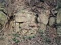 Sandstone (Greene Formation, Lower Permian; Clark Hill section, Long Ridge, Monroe County, Ohio, USA) 2 (29420563100).jpg