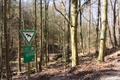 Schlitz Rohrwiesenbachtal und Eisenberg bei Schlitz NR 165214 Sign Fagus sylvatica Forest Stream.png