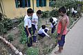 School Students Planting Polianthes tuberosa - Ramakrishna Mission Ashrama - Sargachi - Murshidabad 2014-11-11 8967.JPG