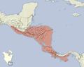 Sciurus variegatoides distribution map.png