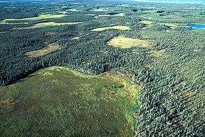 Selawik National Wildlife Refuge - Selawik Refuge Wetlands