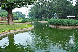 Gopalapuram, Chennai - Artificial pond at the Semmozhi Park