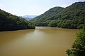 Shirasagi Lake, Toyota 2013.jpg
