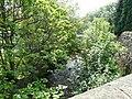 Shire Brook - geograph.org.uk - 1378216.jpg