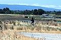 Shoreline Park Mountain View California IMG 2511.jpg