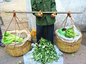 Carrying pole - A wooden carrying pole in Haikou, Hainan Province, China.