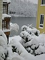 Side Yard and Thoreau - Winter 06 (98758908).jpg