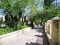 Sidewalk Shiraz.jpg