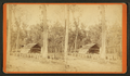 Silver Springs Run, Fla. Agnew's Turpentine Manufactory. The Store House, from Robert N. Dennis collection of stereoscopic views.png