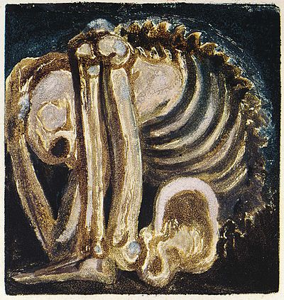 Skeleton of Urizen from A Small Book of Designs, object 13 (Bentley 136-13, Butlin 260-13).jpg