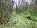 Slough of Despond, looking towards Craig Farm.JPG