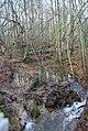 Small Stream, Stock Wood (2) - geograph.org.uk - 1133275.jpg