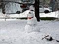 Sneženi mož - panoramio (1).jpg