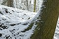 Sneeuw in Meerdaalbos - 372704 - onroerenderfgoed.jpg