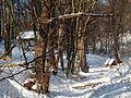 Sneh Prešov 17 Slovakia44.jpg