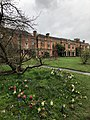 Somerville College Library with hyacinths.jpg