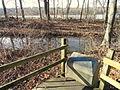 South Hadley Canal - Hadley Falls Canal Park - DSC04458.JPG