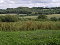 Southeast from Barley Hill - geograph.org.uk - 480906.jpg