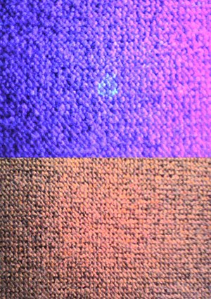 Semen - Semen stain on carpet observed with and without ultraviolet light