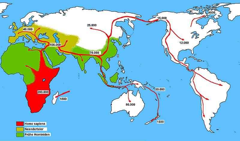 File:Expansión del homo sapiens.jpg