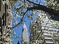 Springtime in NYC.jpg