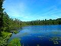 Spruce Lake - panoramio (2).jpg