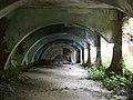 Srebrenica Crni Guber 2.JPG
