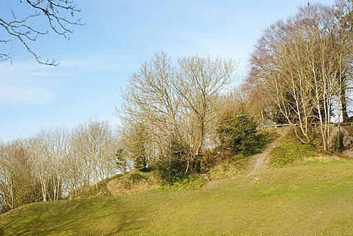 St.Giles's Hill, Winchester - geograph.org.uk - 1736323
