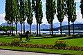 Stadtpark von Luzern.jpg