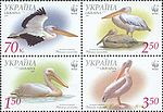 Stamps 2007 Ukrposhta 855-858.jpg