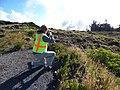 Starr-160712-0056-Plantago lanceolata-habit with Andy-8500 Ft Grove Haleakala National Park-Maui (29556840322).jpg