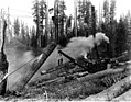 Steel spar skidder at work, unidentified logging operation, Washington, 1916 (KINSEY 2801).jpeg