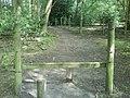 Stile and Footpath - geograph.org.uk - 1429287.jpg