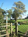 Stile and gateway for track to Harleston Church - geograph.org.uk - 998613.jpg