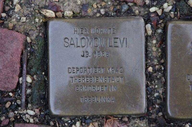 File:Stolpersteine Salomon Levi Bad Wildungen.jpg