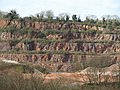 Stoneycombe Quarry - geograph.org.uk - 1228727.jpg